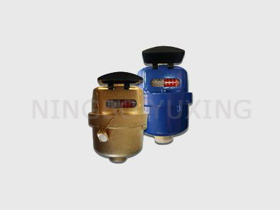 ROTARY PISTON VOLUMETRIC WATER METERS